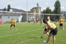 Faustballturnier Ettiswil 2012_14
